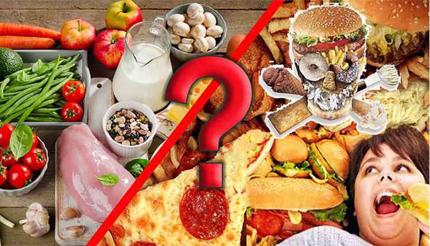 Простыми словами про БЖУ (белки, жиры, углеводы): таблица содержания в пище
