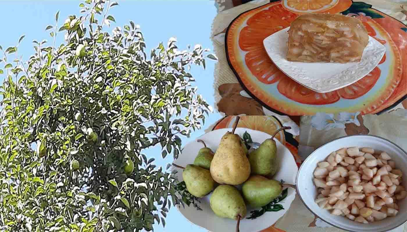 Идеальный конфитюр из груш на зиму: пошаговый простой рецепт с фото