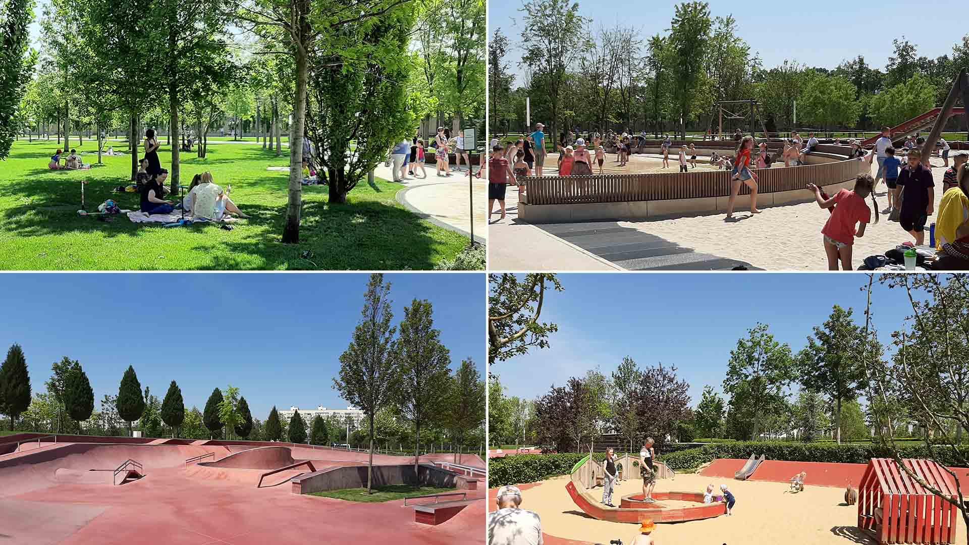Ручей в парке